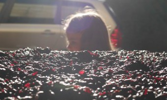 Post Fermentation Maceration Begins! Vintage 2015 Pushing for Wine Yumminess! by Paul Kaan
